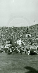 1936 Rose Bowl Game